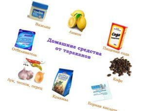 1-domashnie-sredstva-ot-tarakanov-kak-izbavitsya-ot-tarakanov-narodnymi-sredstvami-otzyvy