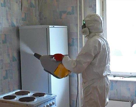 Как избавиться от маленьких тараканов на кухне химическими препаратами