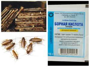 как избавиться от тараканов безопасным способом